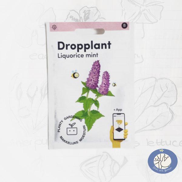 Product afbeelding ID 8678 met informatie over Dropplant zaden van het merk Makkelijke Moestuin voor webshop Birds and Berries België