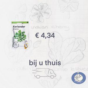 Product afbeelding Koriander van de Makkelijke Moestuin zaden. Birds and Berries verzendt een los zakje in briefomslag